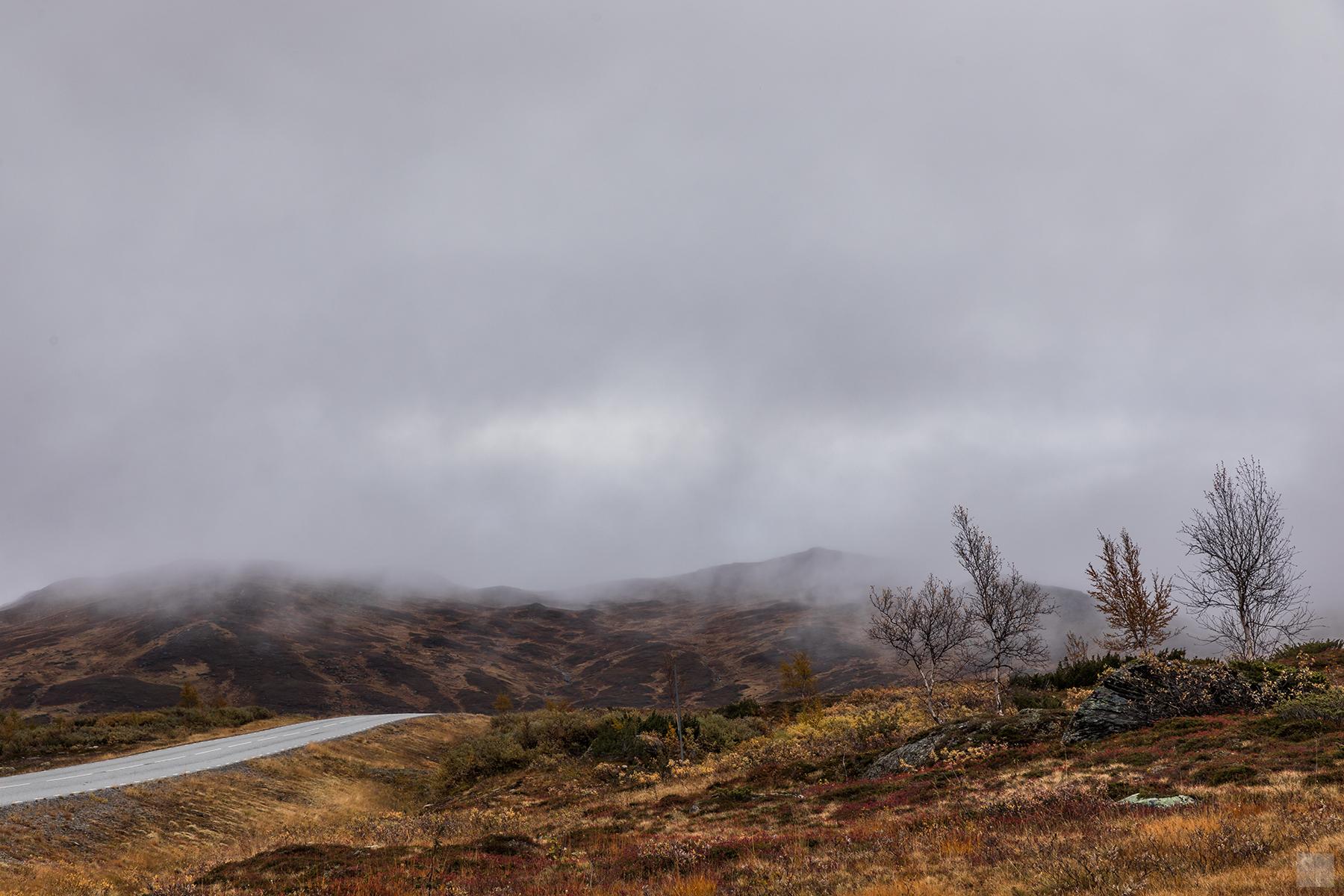 Schweden - Vildmarksvägen - Stekenjokk