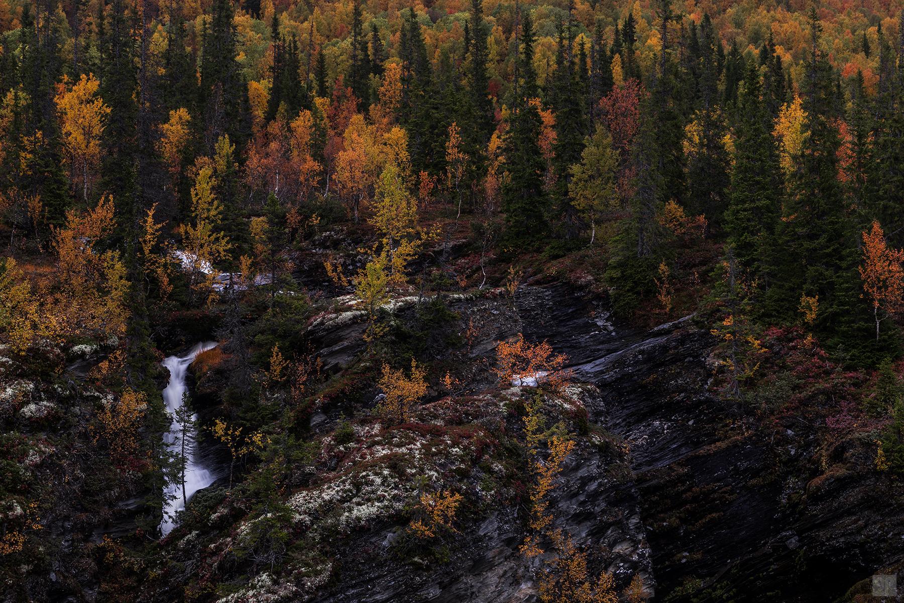 Schweden - Vildmarksvägen - Brakkåfallet