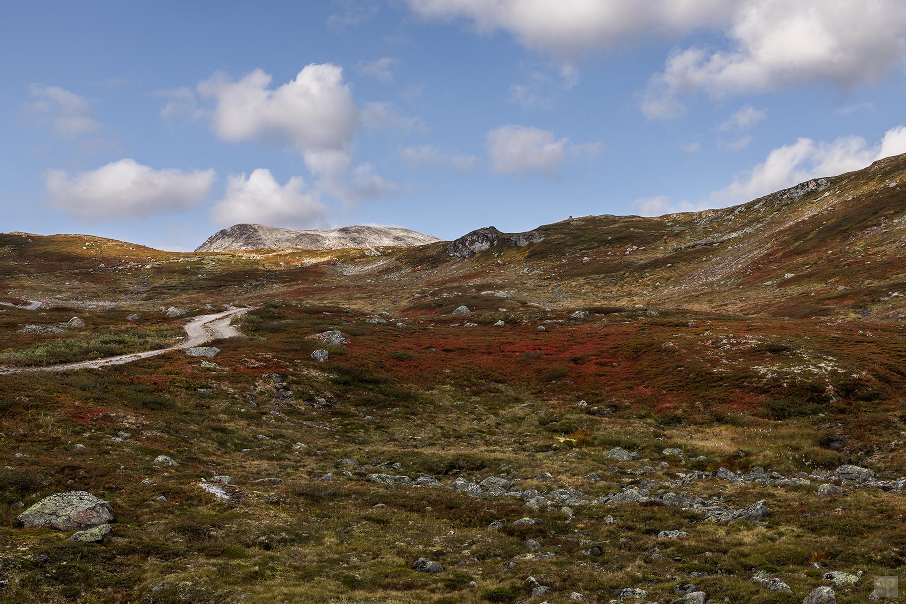 Norwegen - Dalsnibba