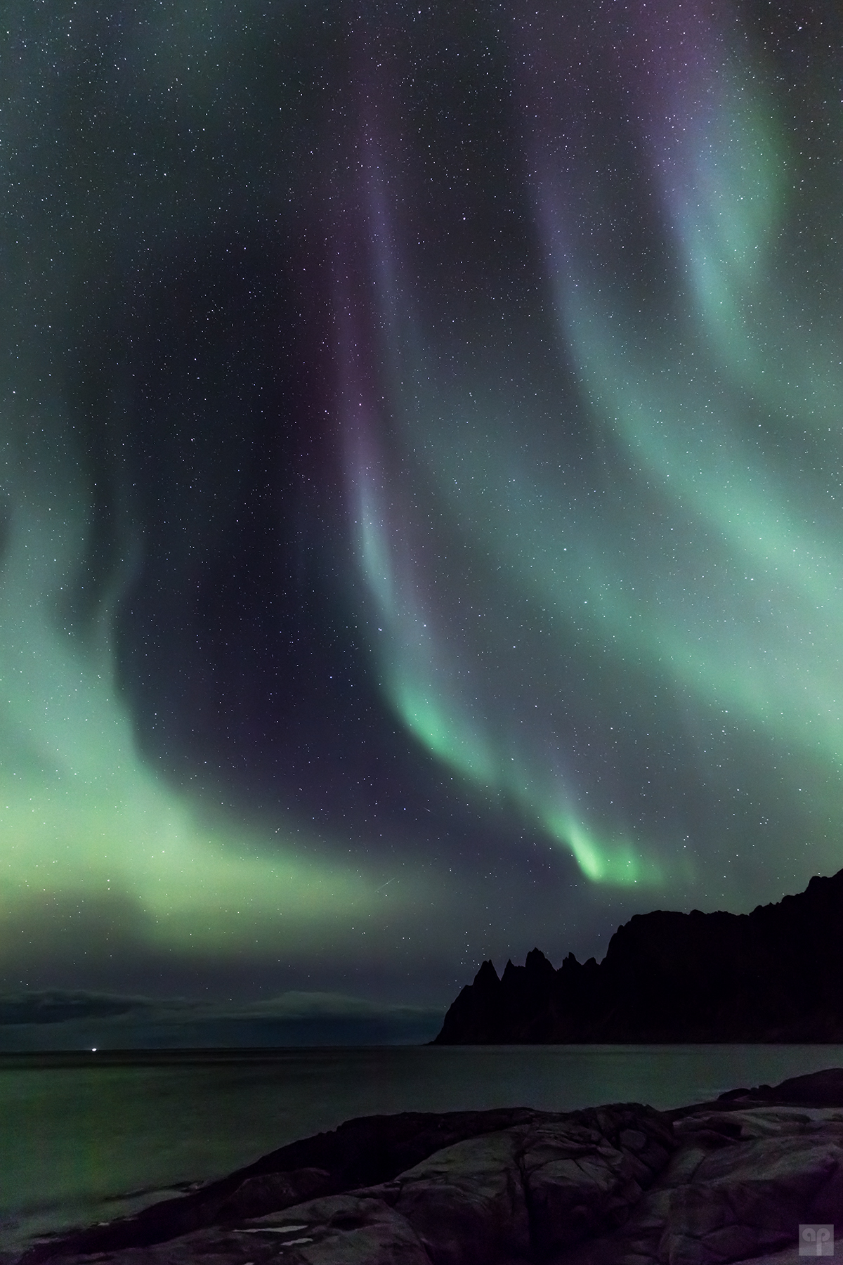 Norwegen - Senja - Polarlicht